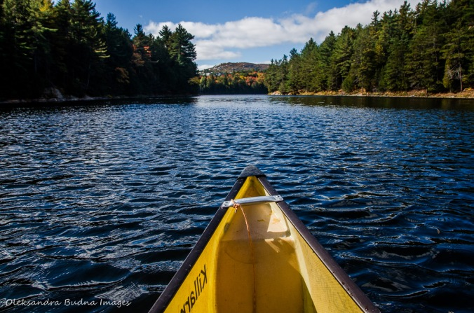 paddling Bell Lake in Killarney in the fall