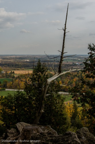 view from Rattlesnake Point in the fall