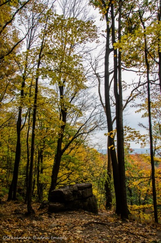 Rattlesnake Point in the fall