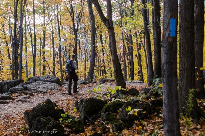 hiking at Rattlesnake Point