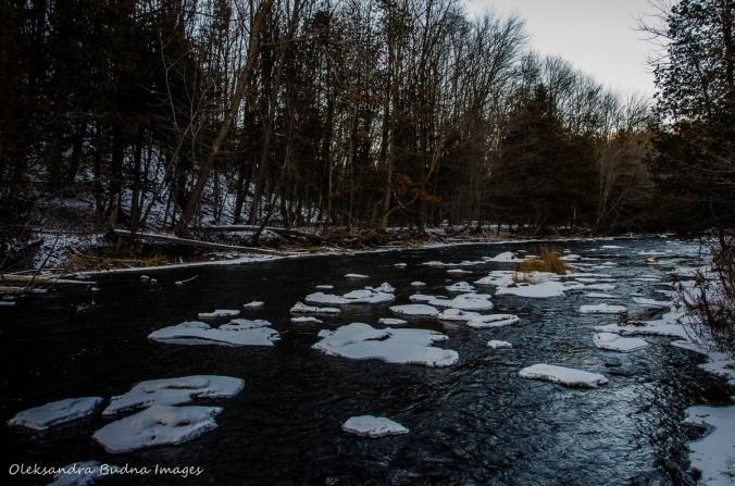 Credit River near Bruce Trail near Devil's Pulpit