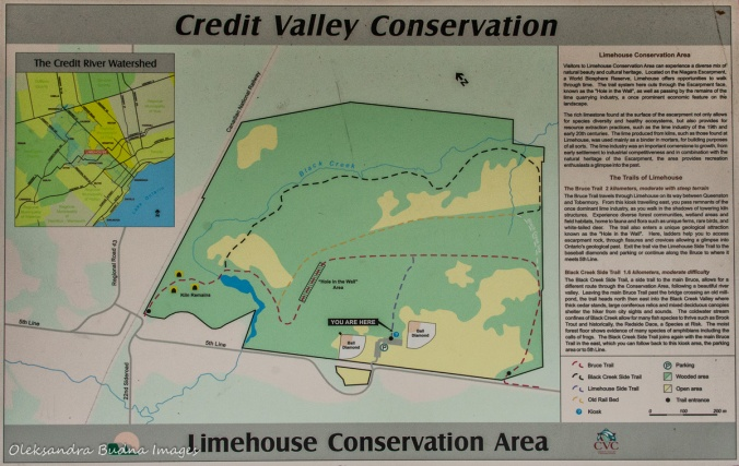 Limehouse Conservation Area map