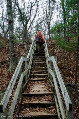 Cedar Trail in Pinery in late fall
