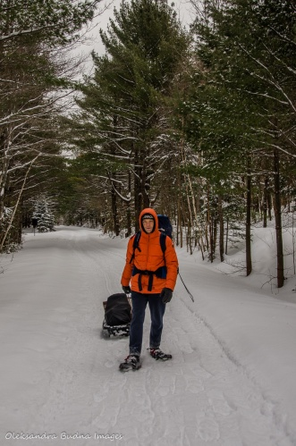 transporting gear in a sled in Gatineau park
