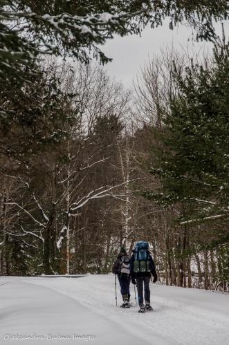 snowshoeing in gatineau