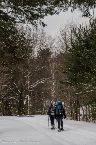 snowshoeing in gatineau