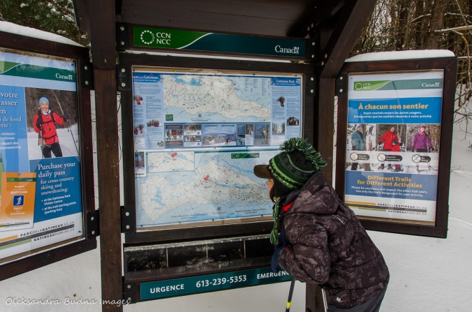 looking at a map of Gatineau park in the winter