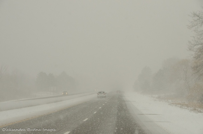 snowstorm on the road