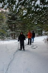 snowshoeing at Gatineau