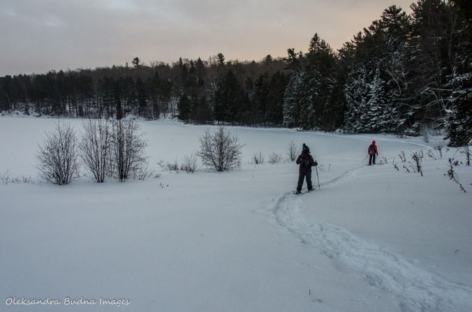 snowshoeing in gatineau park