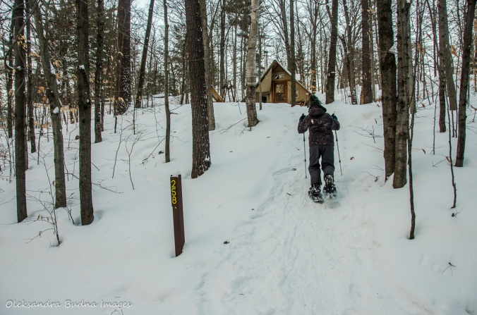 snowshoeing up the hill to four-season tent 258 in gatineau Park