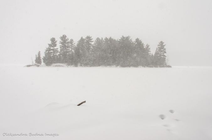 Lake Philippe in Gatineau Park in the winter