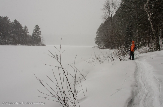 snowshoeing at Gatineau