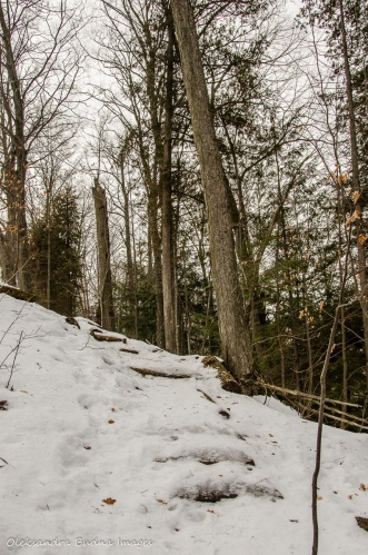 hiking at Hockley Valley Provincial Park