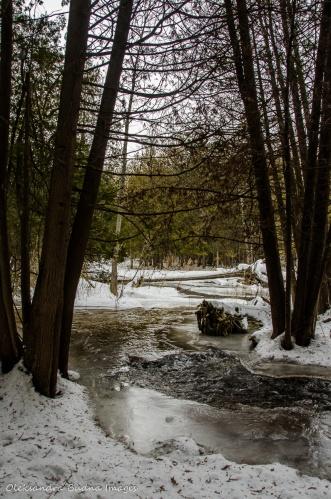 Hockley Valley Provincial Park