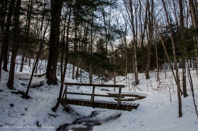 Hockley Valley Provincial Park