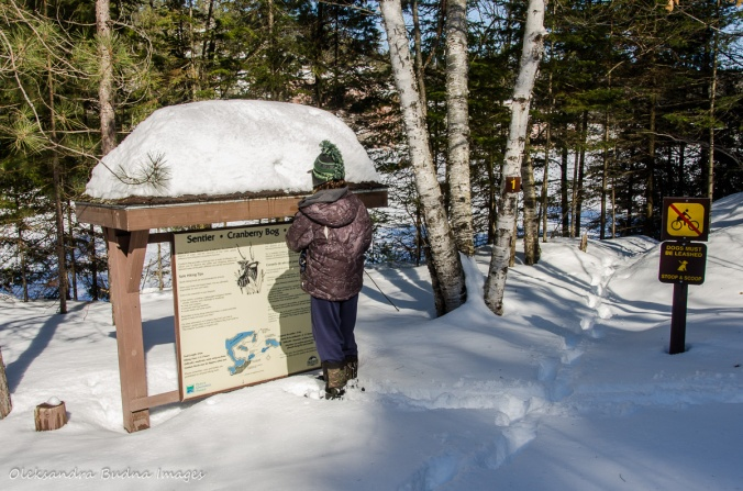 at the Cranberry Bog Trailhead in Killarney Provincial Park in the winter