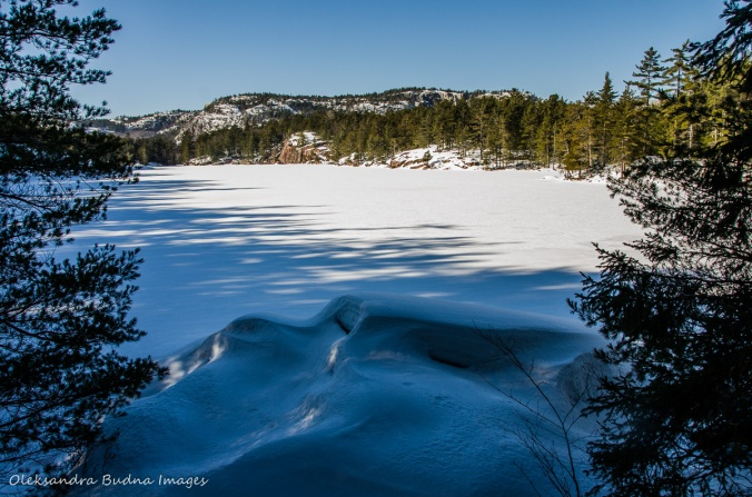 frozen lake along the Cranberry Bog Trail in Killarney in the winter