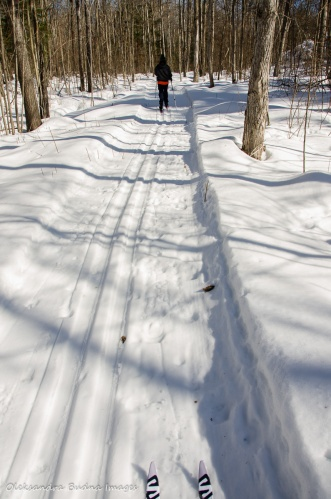 cross-coutnry skiing on the Freeland Trail in Killarney