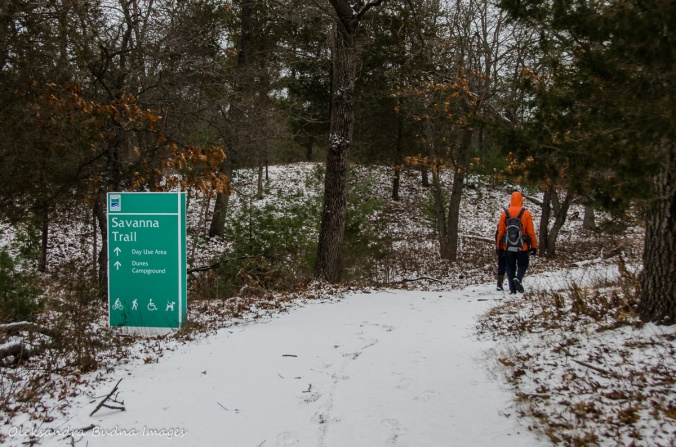 Savanna Trail at Pinery in the winter