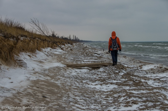 walking along the beach in Pinery in the winter