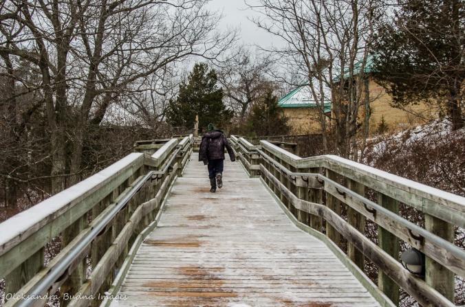 walking towards visitor centre at Pinery