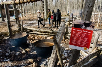 maple syrup making demonstration at Mountsber Conservation Area