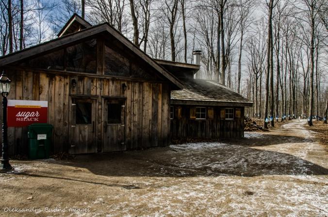 sugar shack at Mountsber Conservation Area