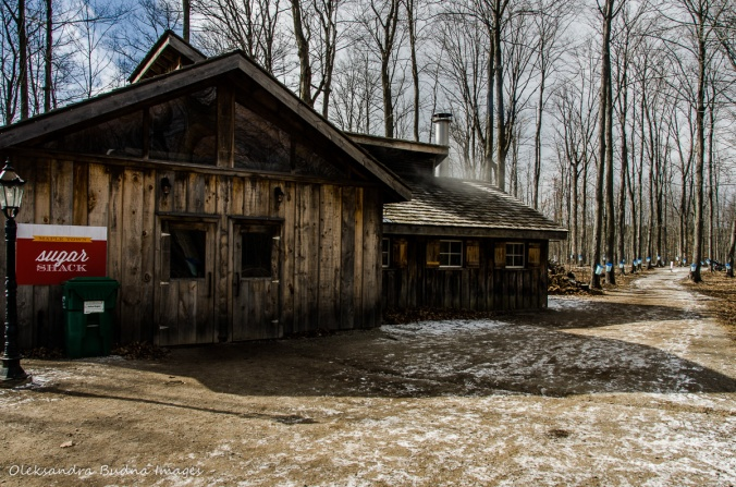 sugar shack at Mountsber Conservation Area