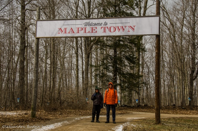 Maple Town at Mountsber Conservation Area