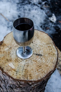 glass of wine on a tree stump