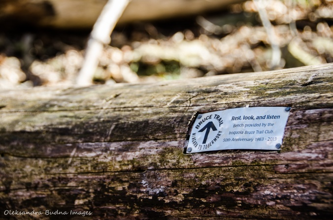 sign on the log along the Iroquioa section of Bruce Trail