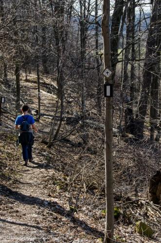 hiking Bruce Trail