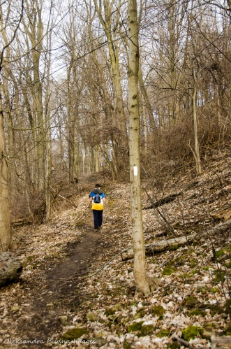 hiking Bruce Trail aroung Hamilton