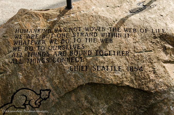 quote by Chief Seattle at Point Pelee