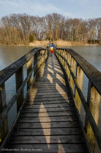 footbridge at Wheatley Provincial Park