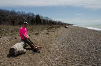 beach at Point Pelee