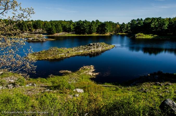 Mink Lake at Frontenac Provincial Park