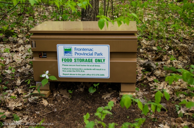 food locker at Frontenac Provincial Park
