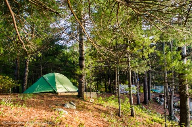 campsites 4 at Frontenac Provincial Park