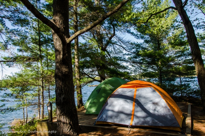 campsite 4C on Big Salmon Lake at Frontenac Provincial Park