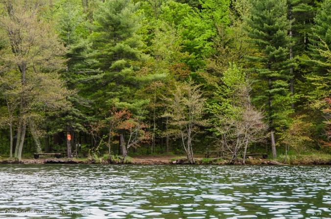 campsites 5 on Big Salmon Lake in Frontenac