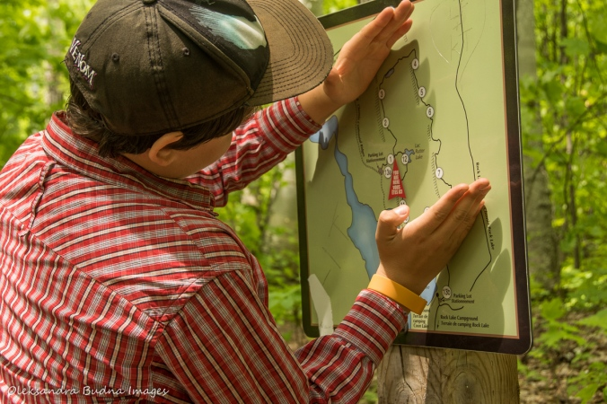 Looking at the map of Centennial Ridges trail in Algonquin