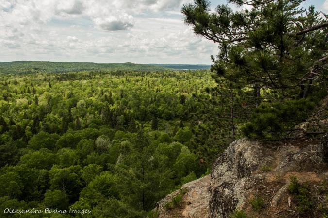 views from Centennial Ridges trail in Algonquin