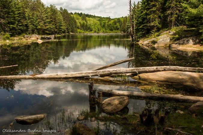 hiking Centennial Ridges trail in Algonquin