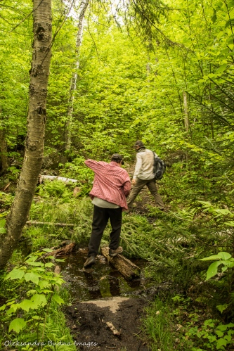 hiking Centennial Ridges in Algonquin