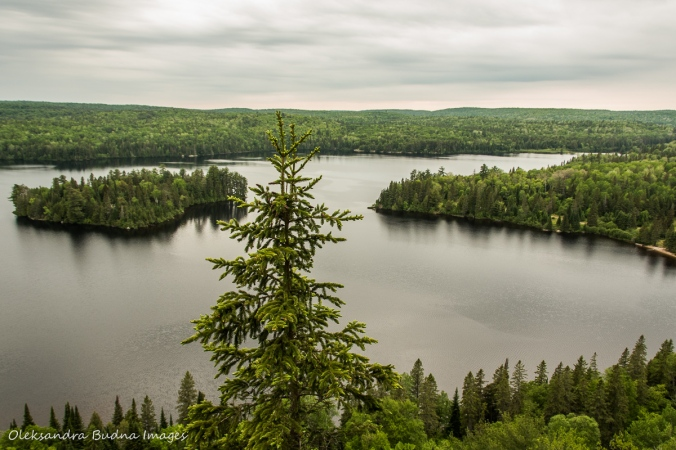 view of Whitefish Lake from Centennial Ridges trail in Algonquin