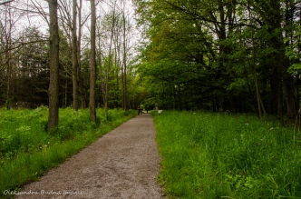 Monarch Trail at Dundas Valley Conservation Area