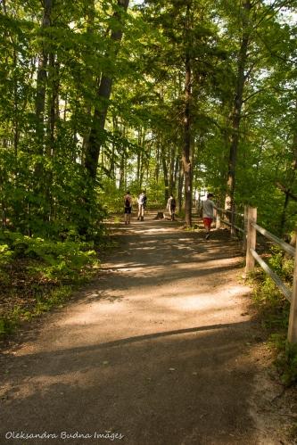 Bruce Trail near Felker's Falls