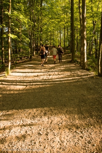 hiking Bruce trail near Hamilton